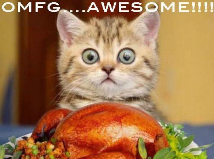 Funny-Thanksgiving-Photo-Image
